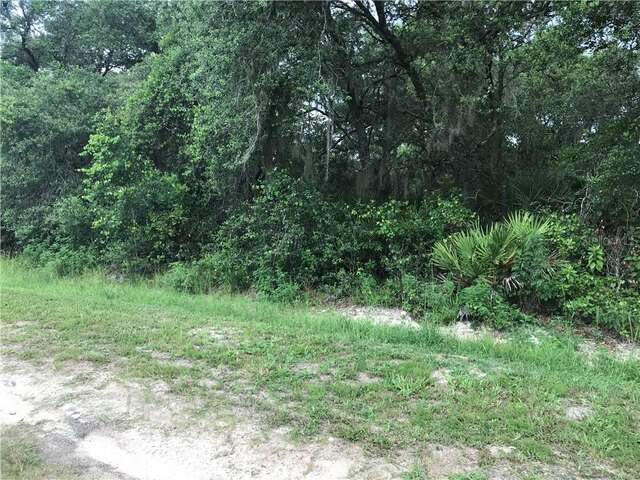 Real Estate for Sale, ListingId: 66213569, Altoona FL  32702