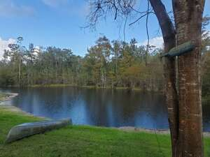 Real Estate for Sale, ListingId: 67731033, Steinhatchee FL  32359